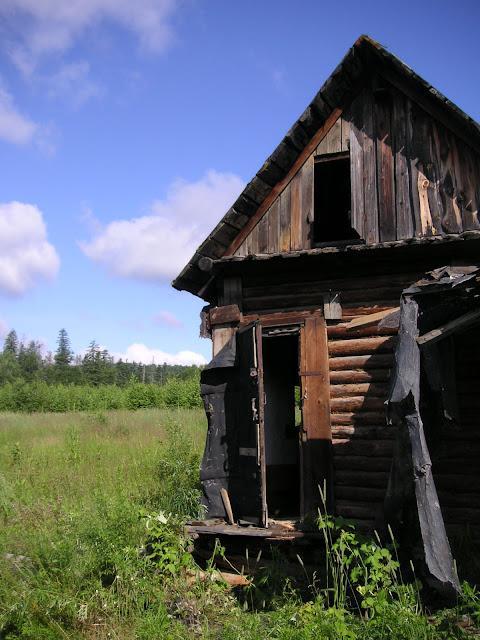 10 km au nord de Krasnorechenskij (800 m d'alt.), près de Dal'negorsk, 25 juillet 2010. Biotope de P. eversmanni. Photo : J. Michel