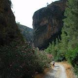 Excursión a Río Verde