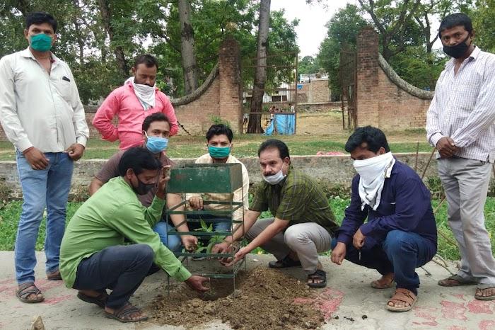 नगरपालिका अध्यक्ष गुड़डू खान ने सोसल डिस्टेंस का पालन करते हुए वृक्षारोपण कर  विश्व पर्यावरण दिवस मनाया