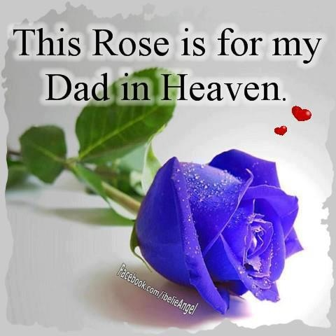 Wallpapers Quotes And Fun: This Rose is for My Dad in Heaven