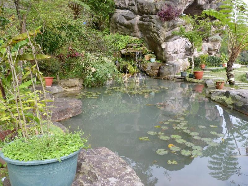 TAIWAN .Jiashi et aux alentours proches - P1000497.JPG