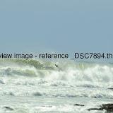 _DSC7894.thumb.jpg