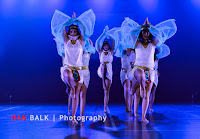 Han Balk Voorster Dansdag 2016-4890.jpg