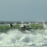 _DSC7882.thumb.jpg