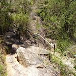 Rocky track in Lyrebird Gully (376487)