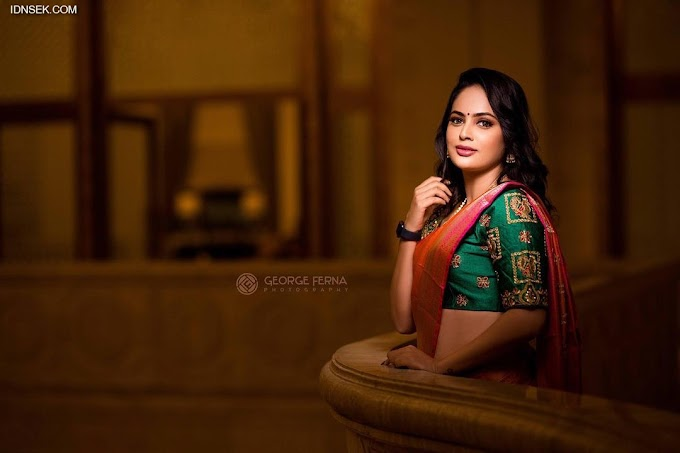 Nandita Swetha ( Swetha Shetty ) Latest Saree Pics