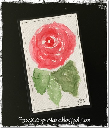 First Watercolor Rose