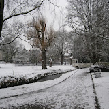 Roath Snow Jan 2013 Album Cover