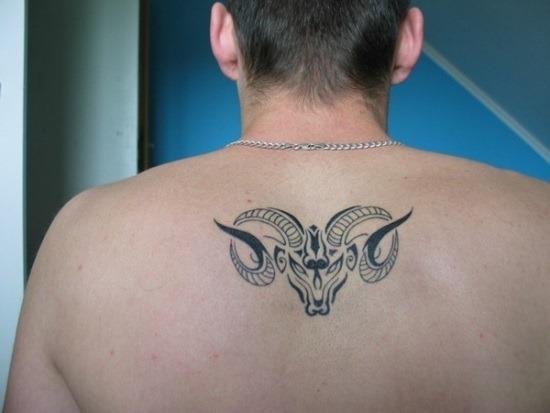 pequeno_ries_desenho_de_tatuagem_nas_costas