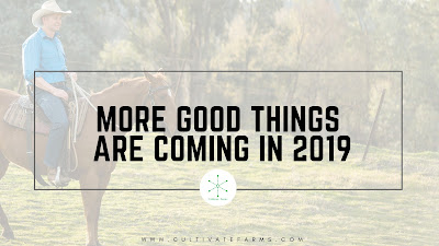 More Good Things are Coming in 2019