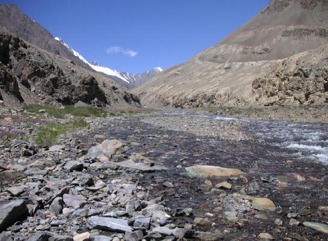 Vallée de la Sasyk, 10 km au NNO de la rivière Pshart, 4000 m (Muzkol Range). 27 juillet 2007. Photo Jean Michel
