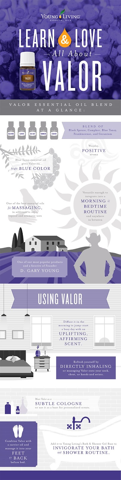 [blog-Learn-Love_All-About-Valor_Infographic_US-3-002]