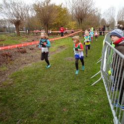 2014 12 07 - Veldloop te Oudenaarde