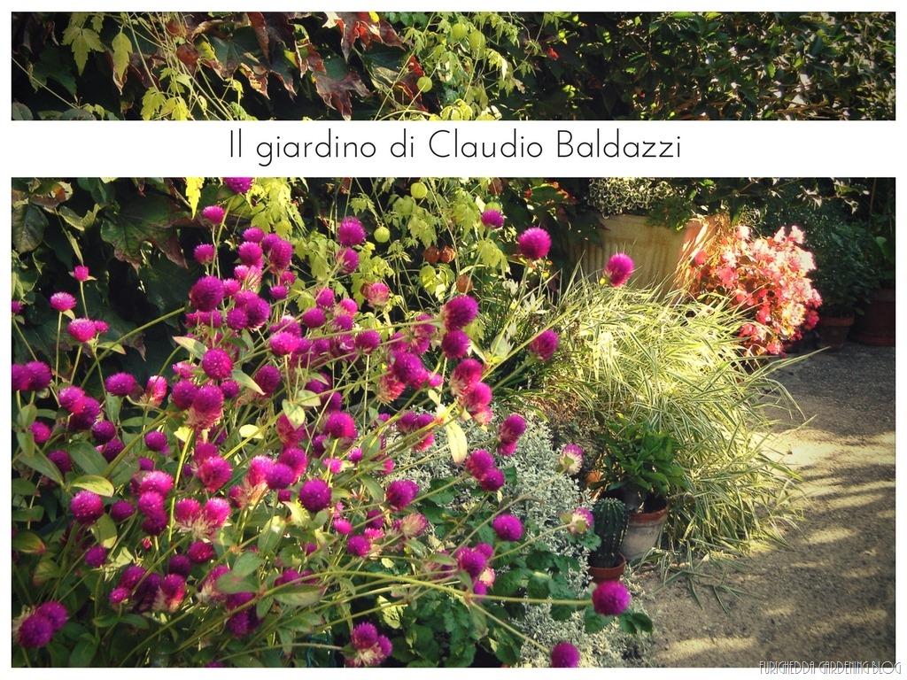 [Il+giardino+di+Claudio+%2815%29%5B3%5D]