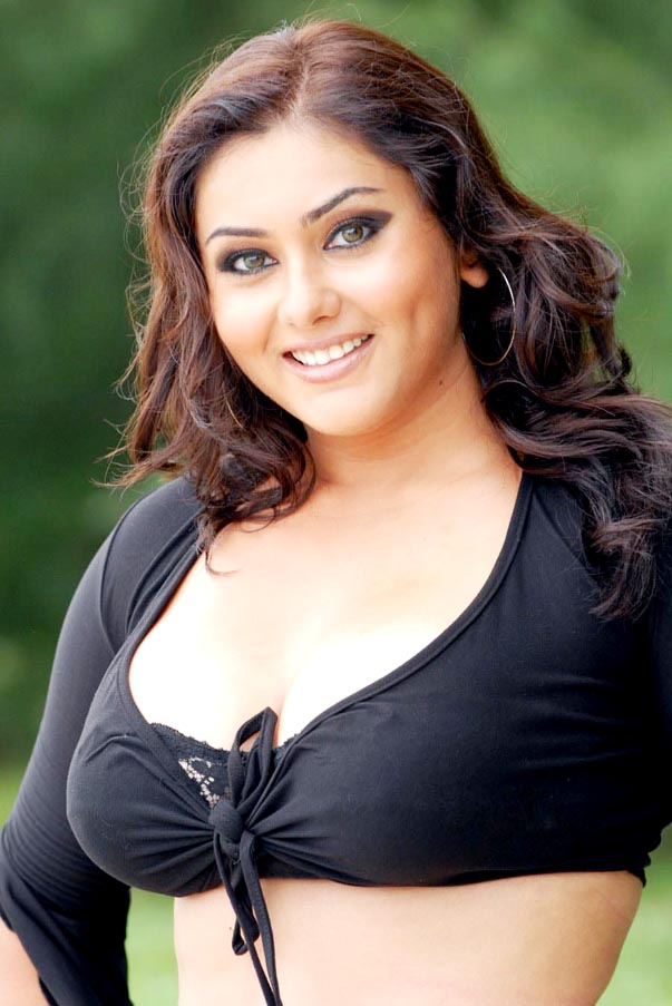 Hairstyle Mode New Look South Indian Actress Namitha Hairstyle Pictures