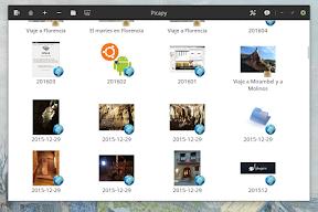 Efectos Instagram en Google Fotos de la mano de Picapy para Ubuntu. Estética.