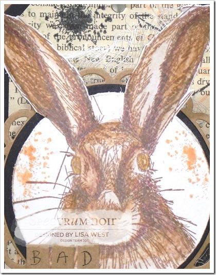 Hare (5)