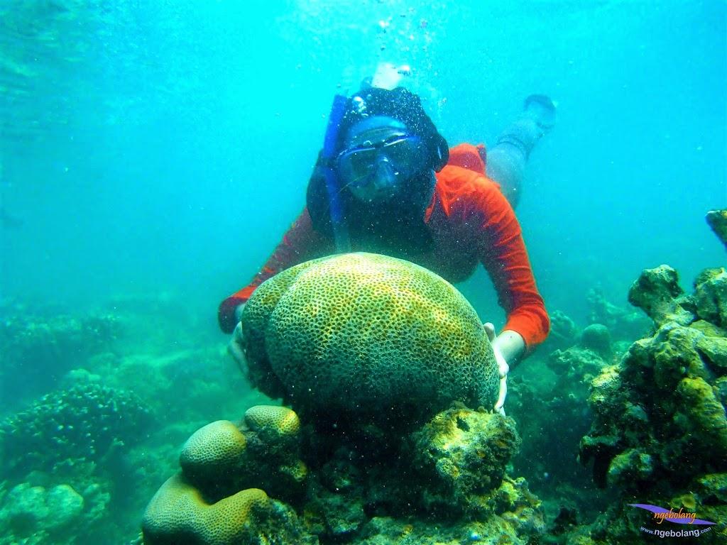pulau harapan, 23-24 mei 2015 panasonic 02