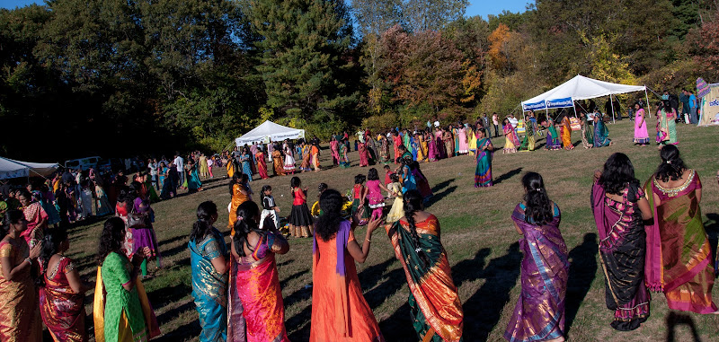 TeNA Boston Bathukamma 2015 Celebrations - 132.jpg