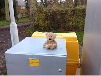 lost bear at tram stop