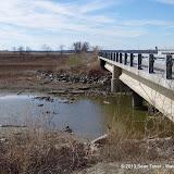 01-19-13 Hagerman Wildlife Preserve and Denison Dam - IMGP4048.JPG