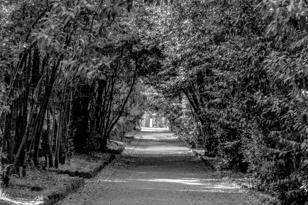 Passaggio per il silenzio di Erader