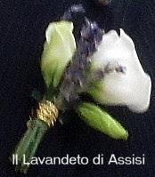 Bottoniere lavanda lisianthus