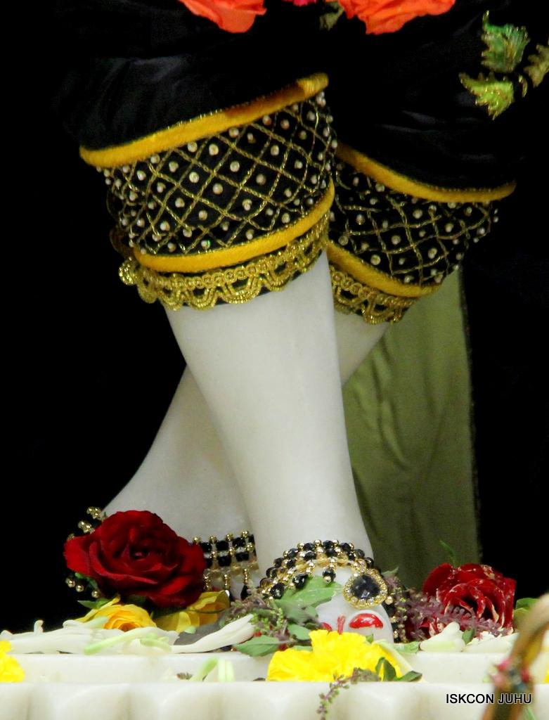 ISKCON Juhu Sringar Deity Darshan on 19th Nov 2016 (41)