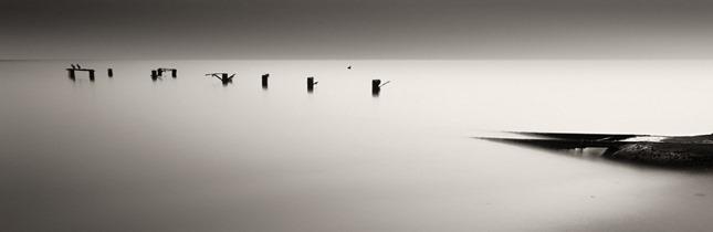 0003797_rhythm-of-silence