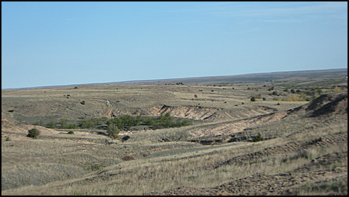TexasLandscape