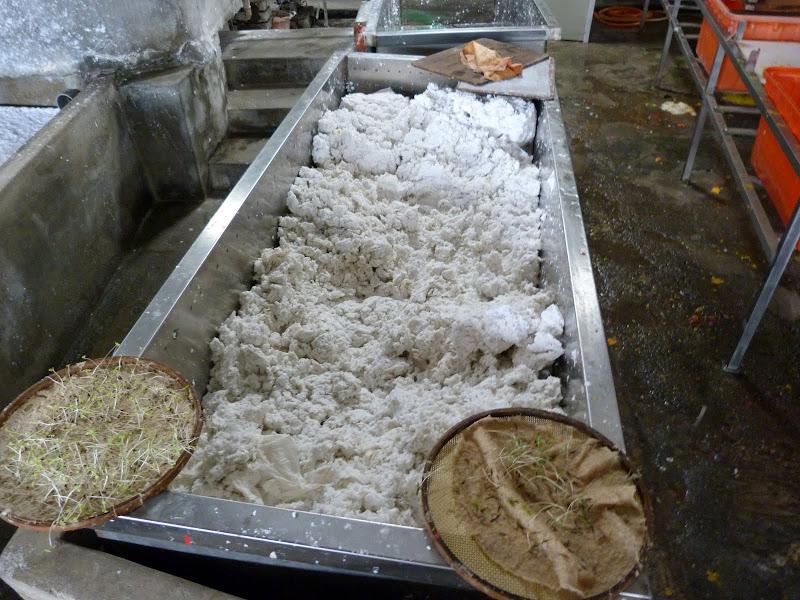 PULI, KUANHSING Paper Factory J 5 - P1150698.JPG