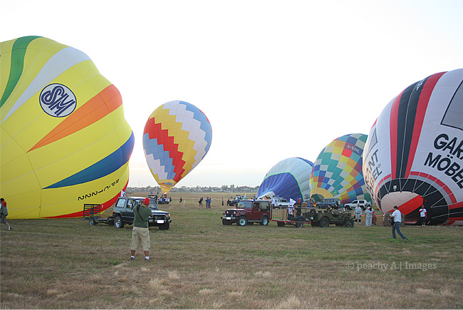 17th Philippine Hot Air Balloon Fiesta