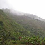 Nangulvi, 1400 m, Intag, (Imbabura, Équateur), 17 novembre 2013. Photo : J.-M. Gayman