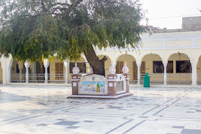 After the takeover of Punjab by British, Hindu Mahants showed possession to the Sikh Gurdwaras and started violating the sanctity of the place. On 20th February 1921 two hundred Sikhs came to the Gurdwara to take control who were brutally killed. Some were burnt alive and some were hanged with this tree.