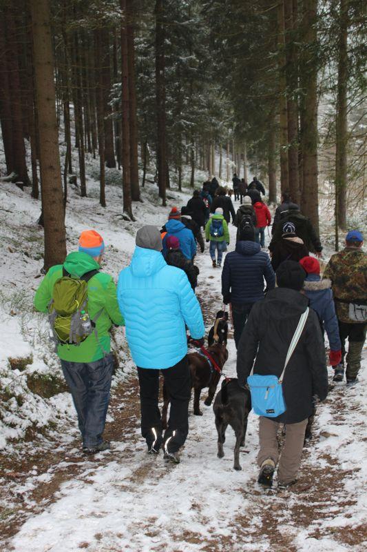 01. Januar 2016: Neujahrswanderung ins Waldnaabtal - IMG_1498.JPG