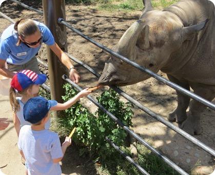 Feeding the Rhino at Cheyenne Mountain Zoo