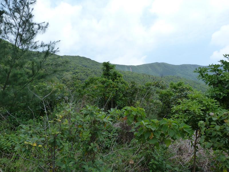 TAIWAN Ile de Lanyu - P1010421.JPG