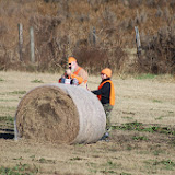 Tower Hunt, November 2014 - IMG_4916.JPG