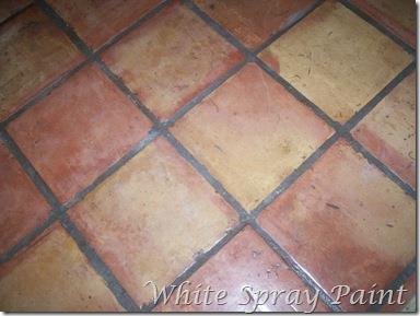 [Saltillo+Tile%5B3%5D]