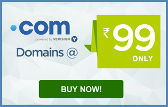 Buy Domain Name Only Rs=99 With 2 Free Custom Email