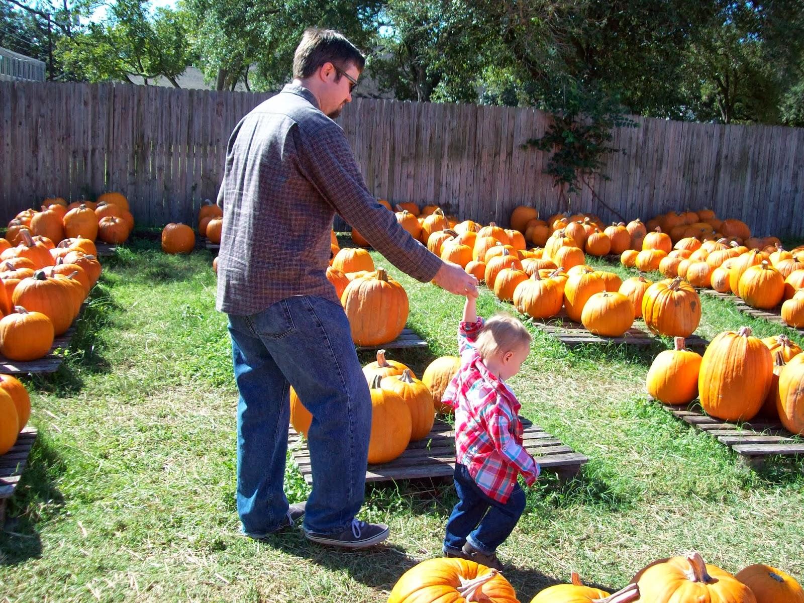 Pumpkin Patch - 114_6536.JPG