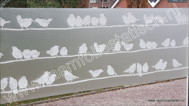 Raamfolie vogels d c fix statisch hechtend raamfoliestatisch for Verwijderbaar glas