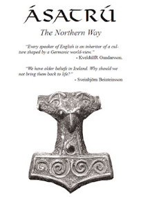 Cover of Anthony Arndt's Book Asatru The Northern Way