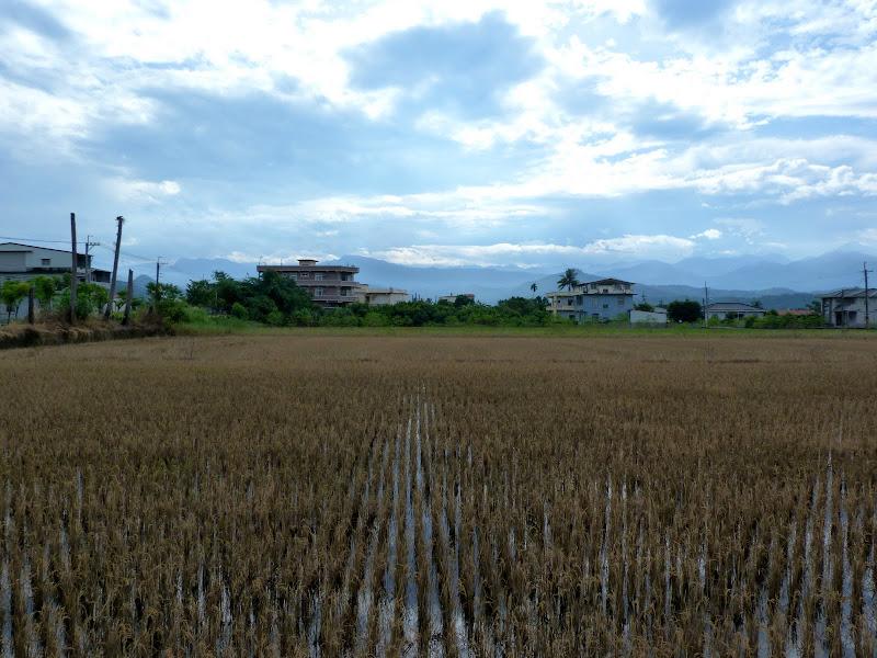 Tainan County. De Meinong à Tainan en scooter. J 13 - vendredi%2B20%2B223.JPG