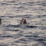 Egypte-2012 - 100_8634.jpg