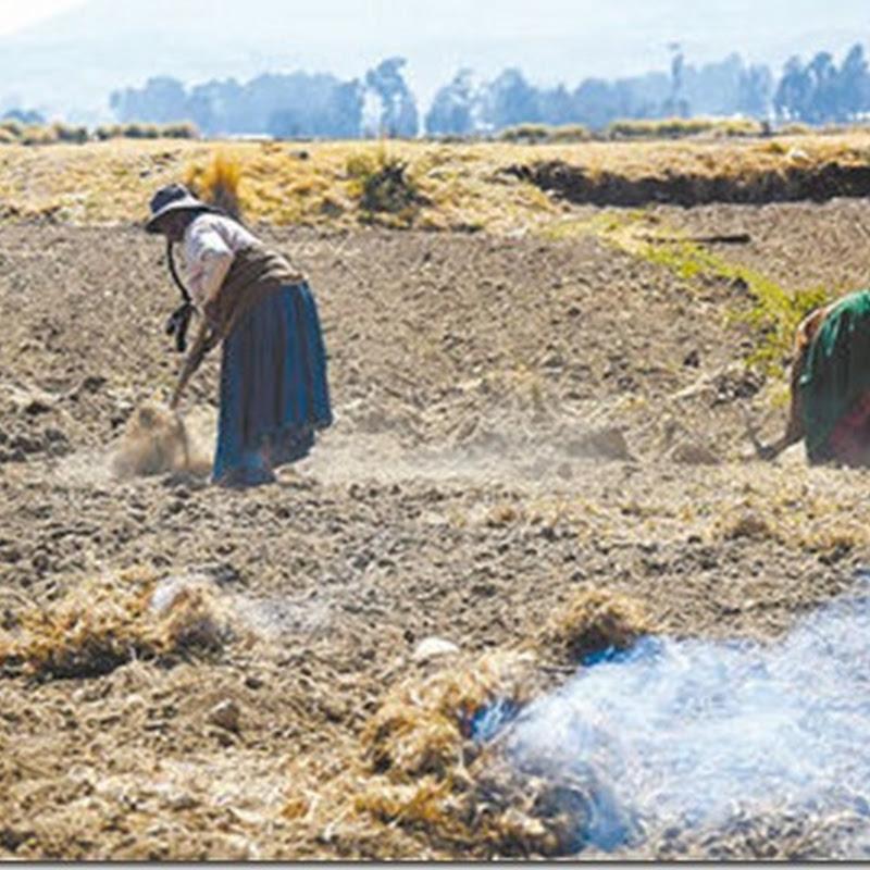 La Paz: La sequía afecta cultivos y pesca de 10 regiones lacustres del Titicaca