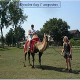 Donderdag Kamelen 2003