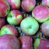 KUC Apple Pies 2013