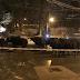 الشرطة النمساوية تلقي القبض على قطيع من الأبقار يتمشى في سالزبورغ