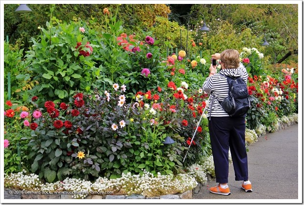 160906_Butchart_Gardens_0099